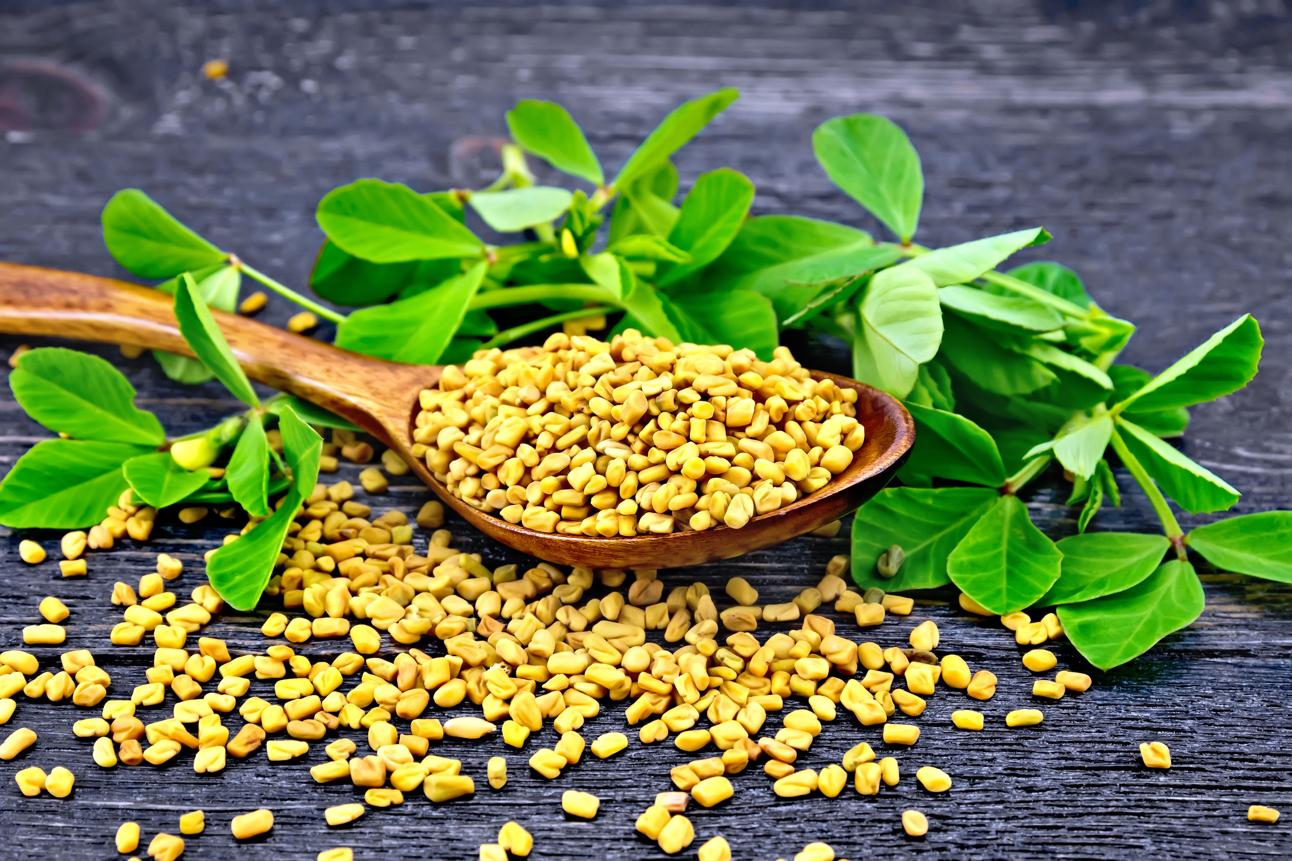 Methi for hair loss