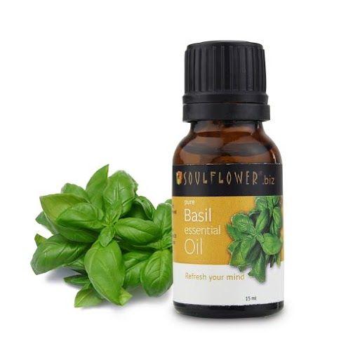 Buy Soulflower Essential Oil Basil (15 ml)-Purplle